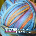 Merino Top  Baltic Multi Colored