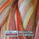 Merino Top - Hollyberry Multi Colored