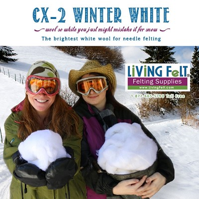 CX-2  BRIGHT White Felting Wool: WINTER WHITE