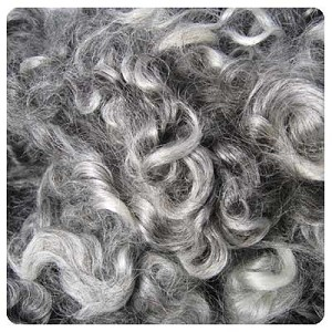 Natural Cotswold Gray Locks