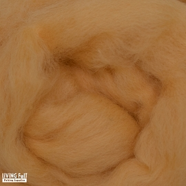 NZ Corriedale Wool – Honey